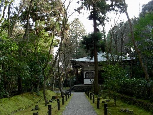 鈴虫、竹林寺 191