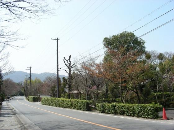 宇多野、学会、大阪城 038