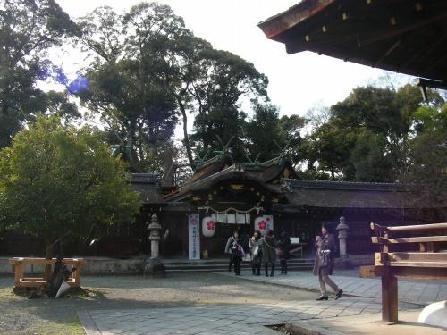平野桜 019