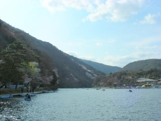 嵐山桜2009 027
