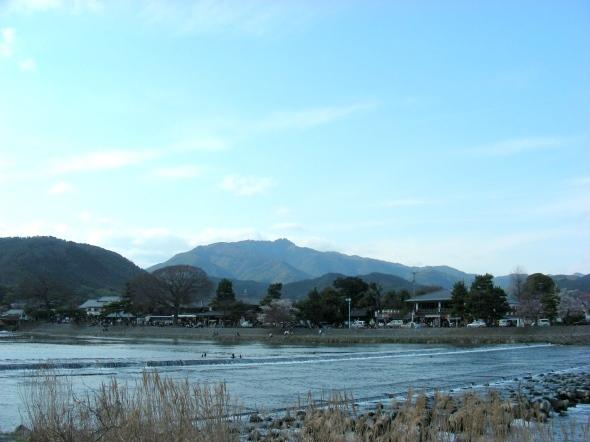 嵐山桜2009 008