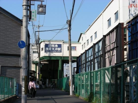 長岡桜 063