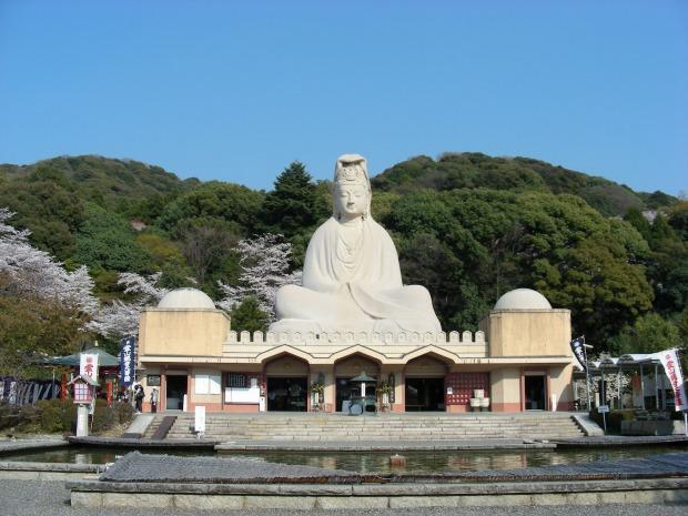円山高台寺桜 154