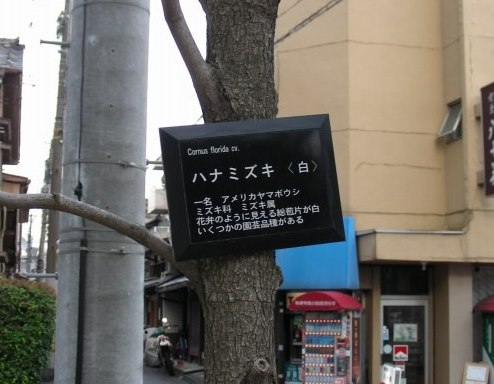 浄福・智恵光院 102