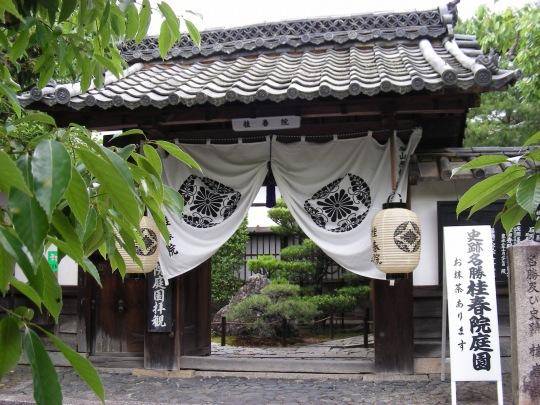 妙心寺蓮 058
