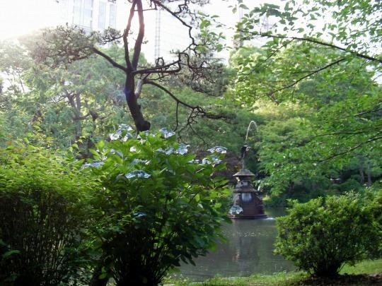東京6月 041