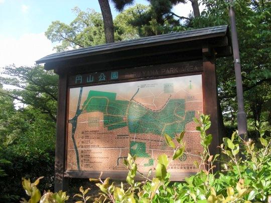 円山あじさい 006