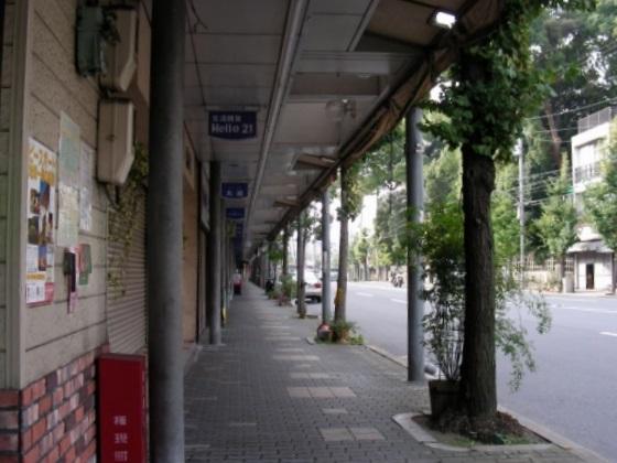 DSCN9041.jpg