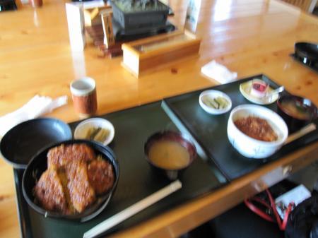 11/2/6ソースカツ丼