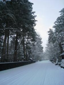 武家屋敷 冬1