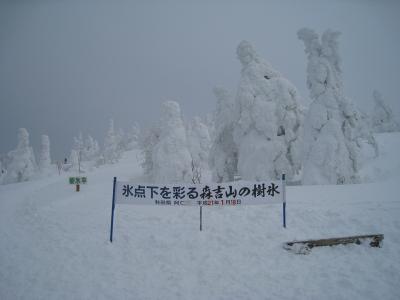 3.樹氷平入口