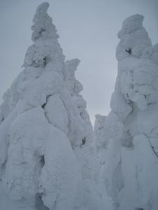 7.樹氷 大