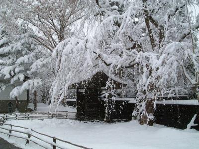 武家屋敷の風景3 3月28日