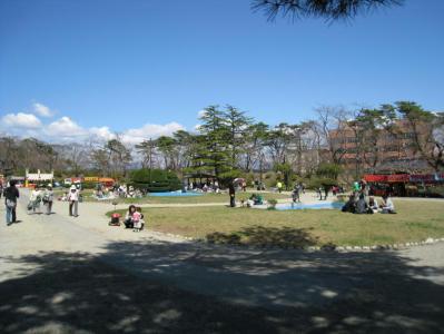 千秋公園桜まつり⑤