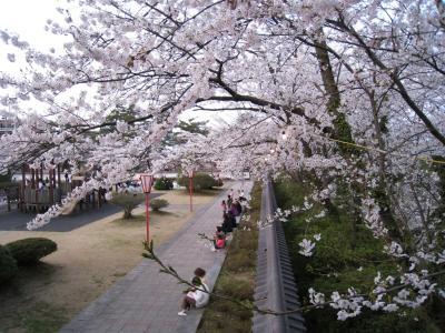本荘公園05