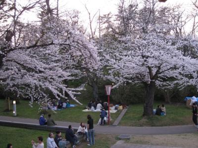 本荘公園08