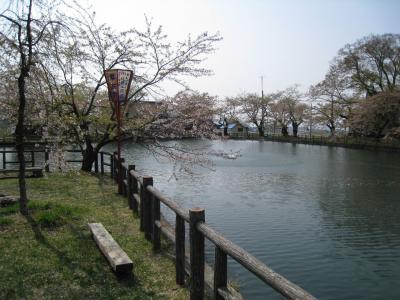 真人公園6