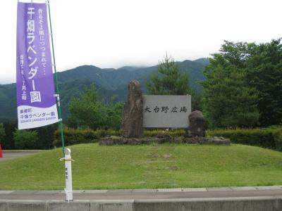 千畑ラベンダー園41