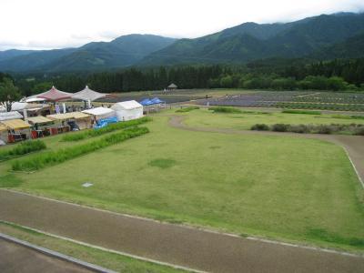 千畑ラベンダー園02