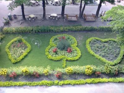 某學校的花圃 很可愛@@