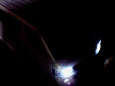 SN380176.jpg