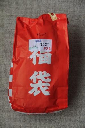 珊瑚福袋1