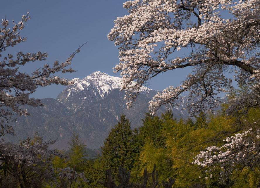 日野春の風景 (94)s