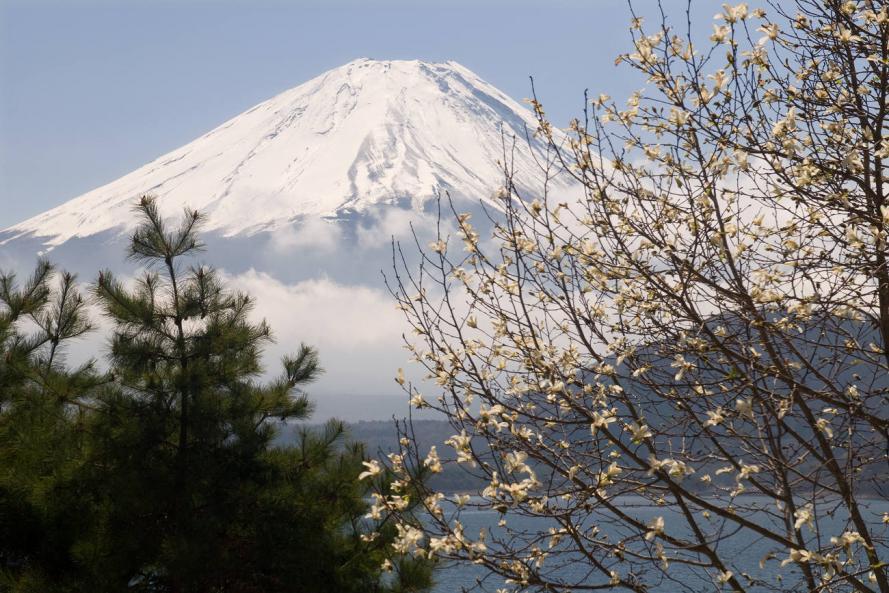 04 24 富士山  本栖湖 (113)s
