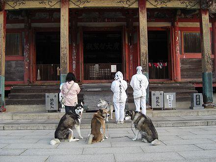 屋島寺でお参り