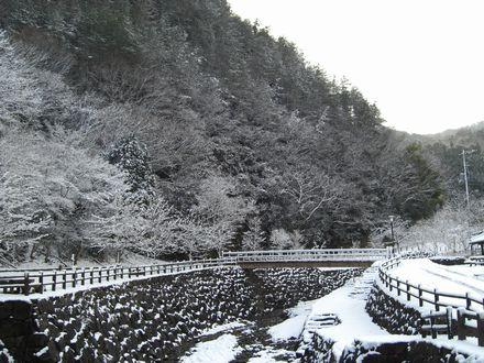 雪化粧した公園