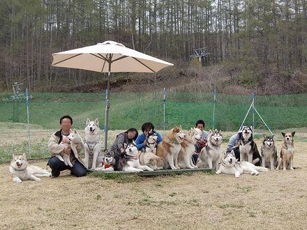 犬のおっぽで集合写真