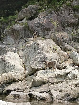 岩の上に立つ北斗と健太