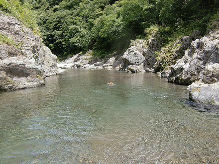 穴吹川を下るジョン