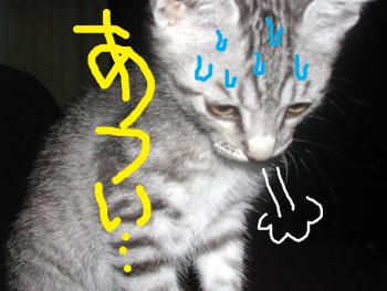blog032.jpg