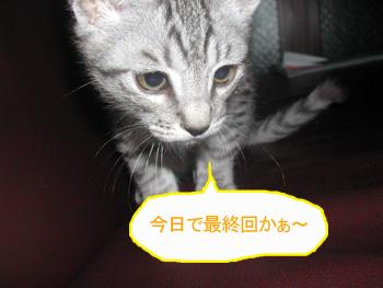 blog034.jpg