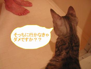 blog045.jpg