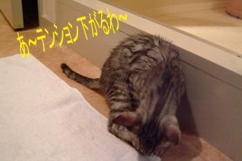 blog047.jpg