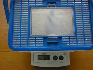 体重測定2