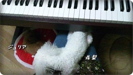0223ピアノ