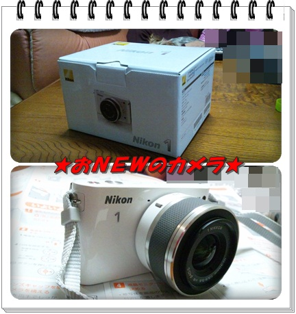 0225カメラ
