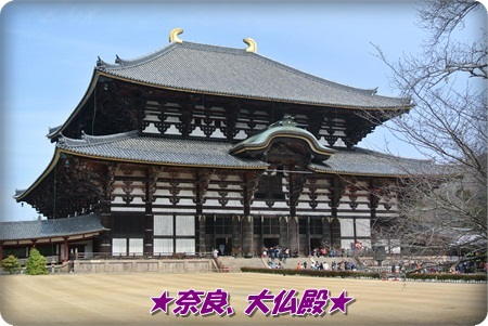 0324大仏殿