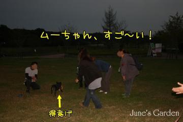 20081012_99_108.jpg
