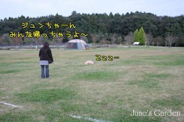 20081012_99_110.jpg