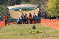 20081012_99_32.jpg