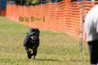 20081012_99_35.jpg