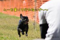 20081012_99_36.jpg