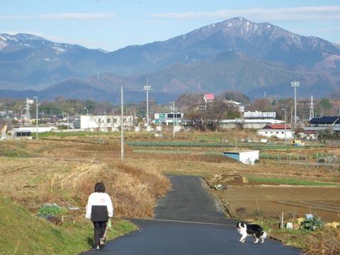 散歩の途中
