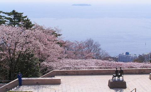 MOA美術館の桜_convert_20110404151940