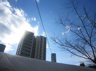 20110316IMG_1618.jpg