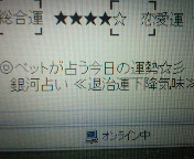 NEC_0245.jpg